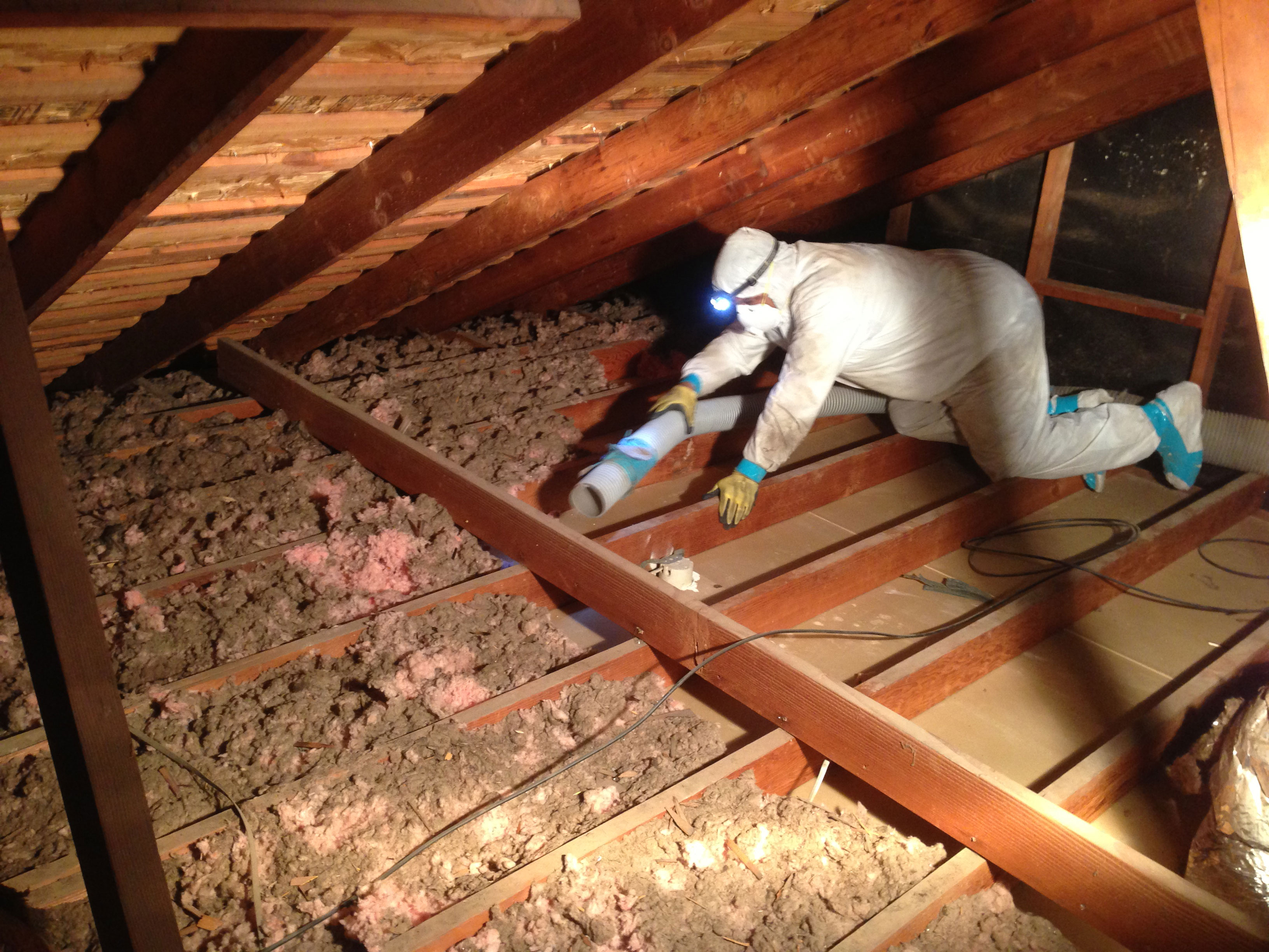 Insulation Removal Texarkana Tx Superior Home Insulation